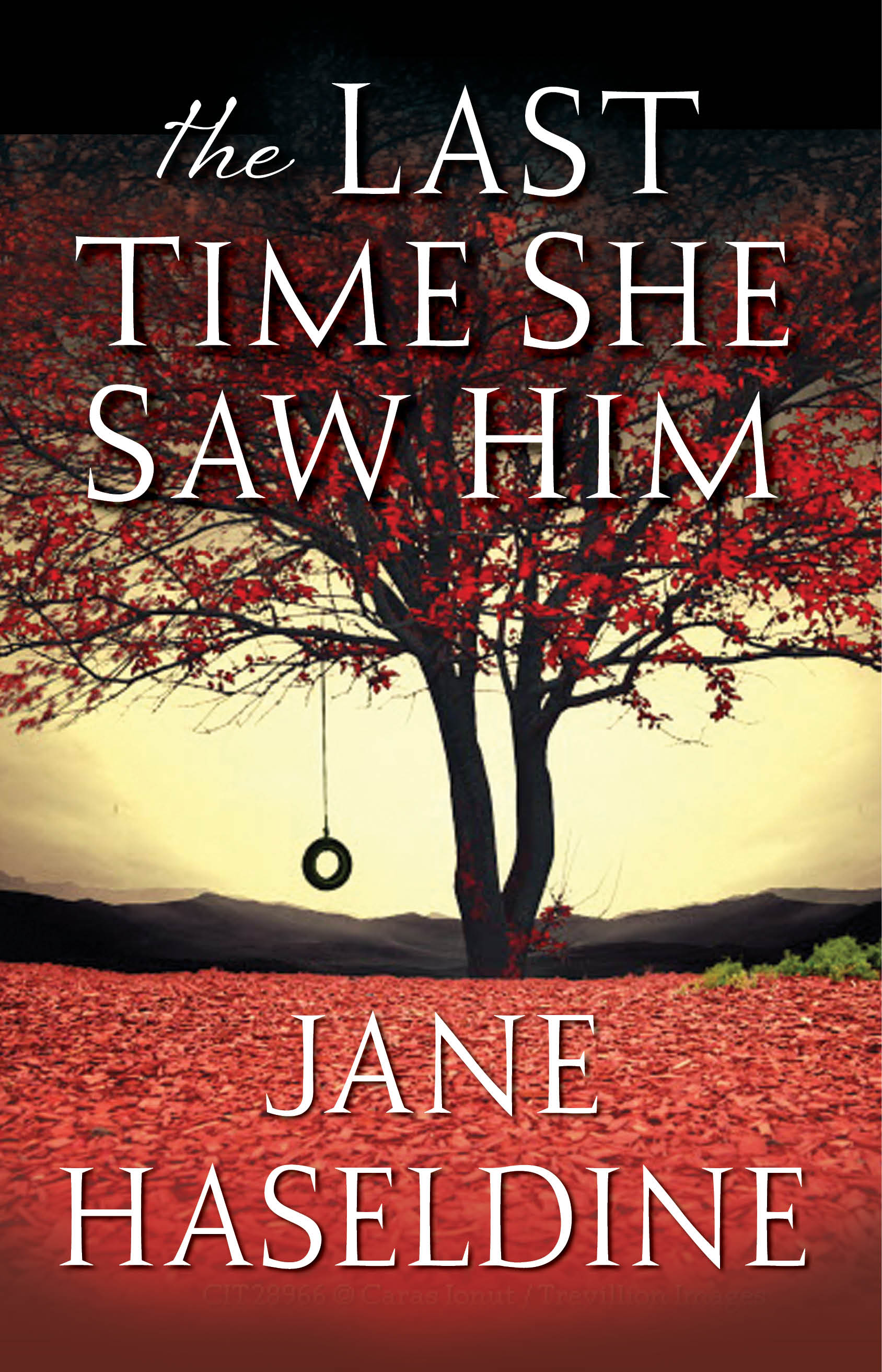 The Last Time She Saw Him book cover