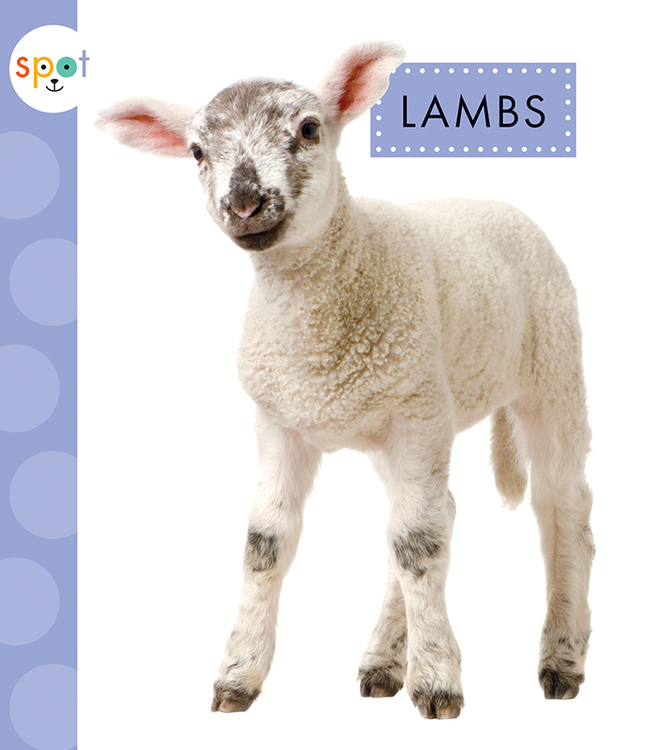 Lambs book cover